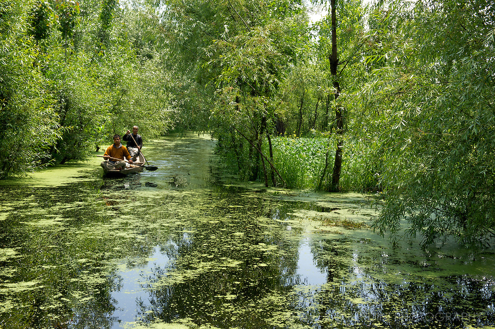 Farmers come back from their daily job on the floating gardens on Dal Lake. Srinagar. Kashmir. India
