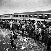 Refugees wait to board a train Tovarnik's train station, Croatia.<br />