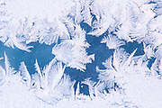 Alaska, Big Lake. Frost on window at -32 degrees.