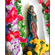 SHOT 12/6/10 2:48:56 PM - Rosaries hang from an Our Lady of Gudalupe figurine in a small roadside capilla near Santa Cruz, Mexico. Our Lady of Guadalupe (Spanish: Nuestra Señora de Guadalupe), also known as the Virgin of Guadalupe is a celebrated Catholic icon of the Virgin Mary. The Virgin of Guadalupe is Mexico's most popular religious and cultural image. Roadside capillas, or tiny chapels, in the Mexican state of Quintana Roo. The capillas are common along the roads and highways of Mexico which is heavily Catholic and are often dedicated to certain patron saints or to the memory of a loved one that has passed away. Often times they contain prayer candles, pictures, personal artifacts or notes. (Photo by Marc Piscotty / © 2010)