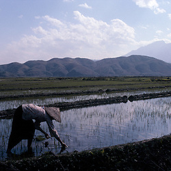 Vietnam | North | Binh Lu | Sapa area