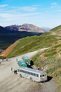 Tour buses stop for a break at the Polychrome Overlook in Denali National Park, Alaska.