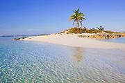 6204-1027  Small island with palm tree, Exumas, Bahamas.