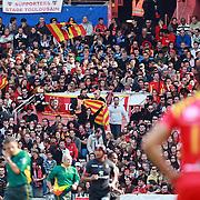 Stade Toulouse v Perpignan