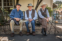 """Friends Peter Dahl, Gary Kay, and Donald Montez hang out together after lunch at the Calistoga Inn.  """"We're retired...now we solve the problems of the world., which is a better place due to our monthly conversations."""""""