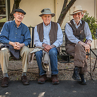 "Friends Peter Dahl, Gary Kay, and Donald Montez hang out together after lunch at the Calistoga Inn.  ""We're retired...now we solve the problems of the world., which is a better place due to our monthly conversations."""