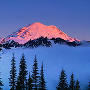 Mount Rainier rises above the fog in this view from Chinook Pass, Washington.