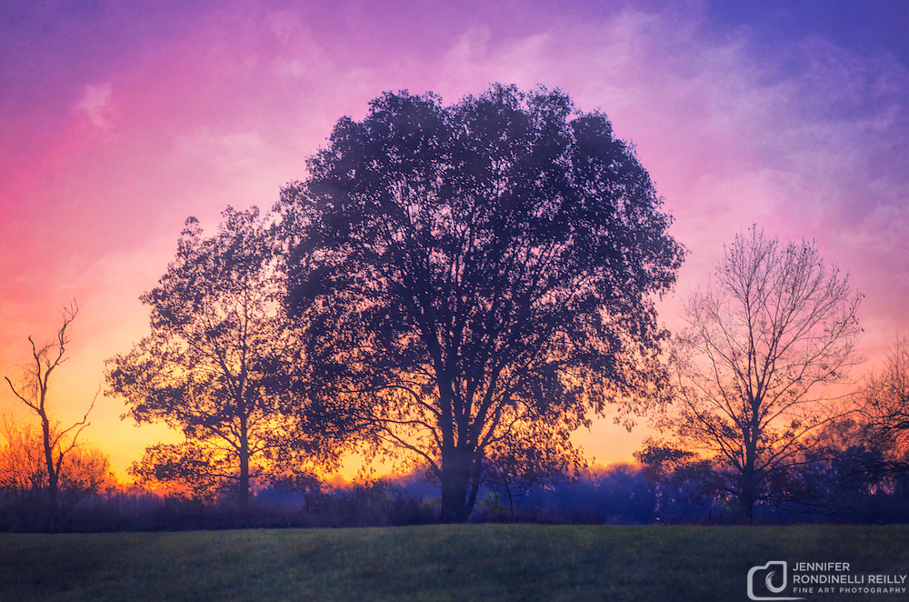 November sunset at Retzer Nature Center in Waukesha,WI.