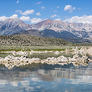 Sierra Nevada peaks and tufa towers reflect in alkaline waters at South Tufa Area, Mono Lake Tufa State Natural Reserve, Lee Vining, California, USA. The Reserve protects wetlands that support millions of birds, and preserves Mono Lake's distinctive tufa towers -- calcium-carbonate spires and knobs formed by interaction of freshwater springs and alkaline lake water. Mono Lake has no outlet and is one of the oldest lakes in North America. Over the past million years, salts and minerals have washed into the lake from Eastern Sierra streams and evaporation has made the water 2.5 times saltier than the ocean. This desert lake has an unusually productive ecosystem based on brine shrimp, and provides critical nesting habitat for two million annual migratory birds that feed on the shrimp and blackflies. Since 1941, diversion of lake water tributary streams by the city of Los Angeles lowered the lake level, which imperiled the migratory birds. In response, the Mono Lake Committee won a legal battle that forced Los Angeles to partially restore the lake level.