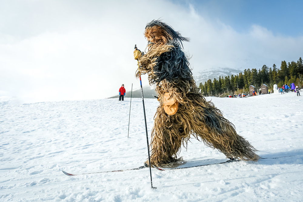 A skier dressed in a wookie costume takes part in the Buckwheat Ski Classic.