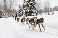 Musher Anthony Beck competing in the Fur Rendezvous World Sled Dog Championships at Campbell Airstrip in Anchorage in Southcentral Alaska. Winter. Afternoon.