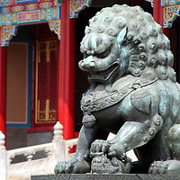 Asia, China, Beijing. Fu Dog statue at Forbidden Palace