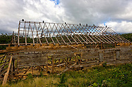 A tobacco barn that had its roof destroyed in a hurricane. There are vultures perched on the ridge-pole.  Pinar del Rio, Cuba.