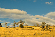 foothills of the Absaroka Range west of Livingston Montana