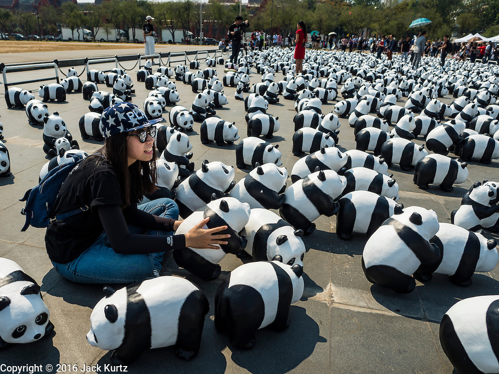 "04 MARCH 2016 - BANGKOK, THAILAND: A woman with one of the  paper maché pandas in the ""1600 Pandas+ World Tour in Thailand: For the World We Live In and the Ones We Love"" exhibit on Sanam Luang in Bangkok. The 1600 paper maché pandas, an art installation by French artist Paulo Grangeon will travel across Bangkok and parts of central Thailand for the next week and then will be displayed at Central Embassy, a Bangkok shopping mall, until April 10. The display of pandas in Thailand is benefitting World Wide Fund for Nature - Thailand and is sponsored by Central Embassy with assistance from the Tourism Authority of Thailand and Bangkok Metropolitan Administration and curated by AllRightsReserved Ltd.     PHOTO BY JACK KURTZ"