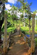 Foot bridge in Parque Nacional la Guira, Pinar del Rio Province, Cuba.