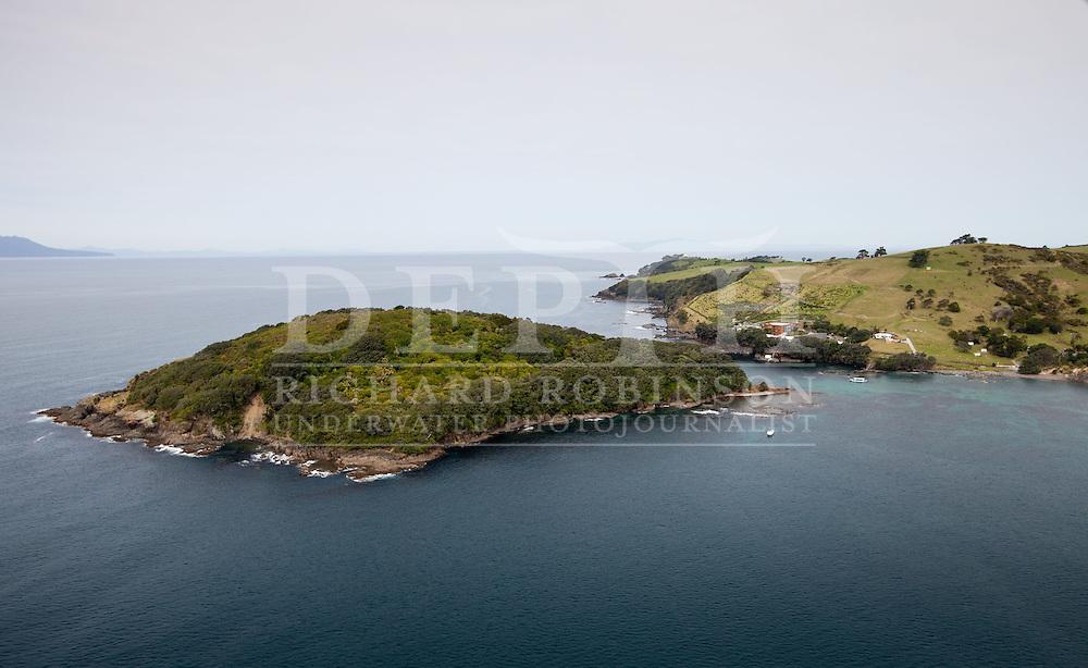Goat Island marine reserve in the Hauraki Gulf, New Zealand. Thursday 25 October 2012 Photograph Richard Robinson © 2012..