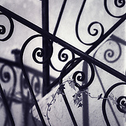 Gently winding metal stair rails, intertwined with ivy.