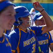 Hofstra University Infielder Megan Patierno (36) celebrates with her teams after hitting a home run Saturday, April 16, 2016, at Delaware softball stadium in Newark, Delaware.