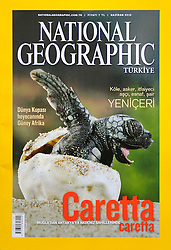 National Geographic magazine Turkey No. 07/2010 prints Solvin's images of the Loggerhead seaturtles (Caretta caretta) as cover story