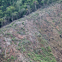 Deforestation in the Sierra Caral of Guatemala, near the border with Honduras