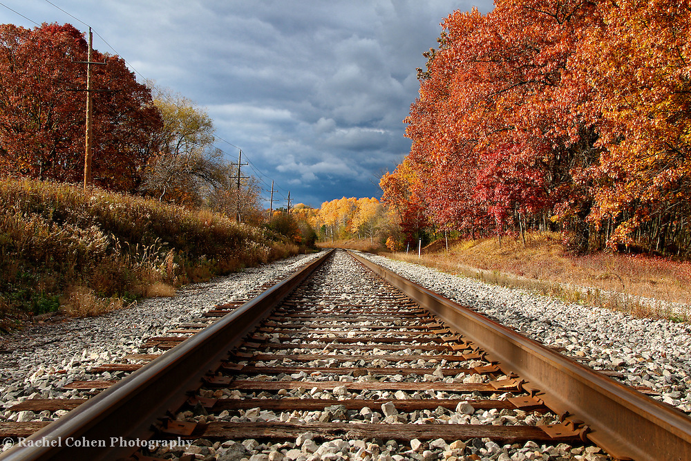 &quot;Rails Ablaze&quot;<br /> <br /> If you love railroad tracks, then you'll love this image of cool rails, wonderful autumn foliage and stormy skies!!<br /> <br /> Autumn Landscapes by Rachel Cohen