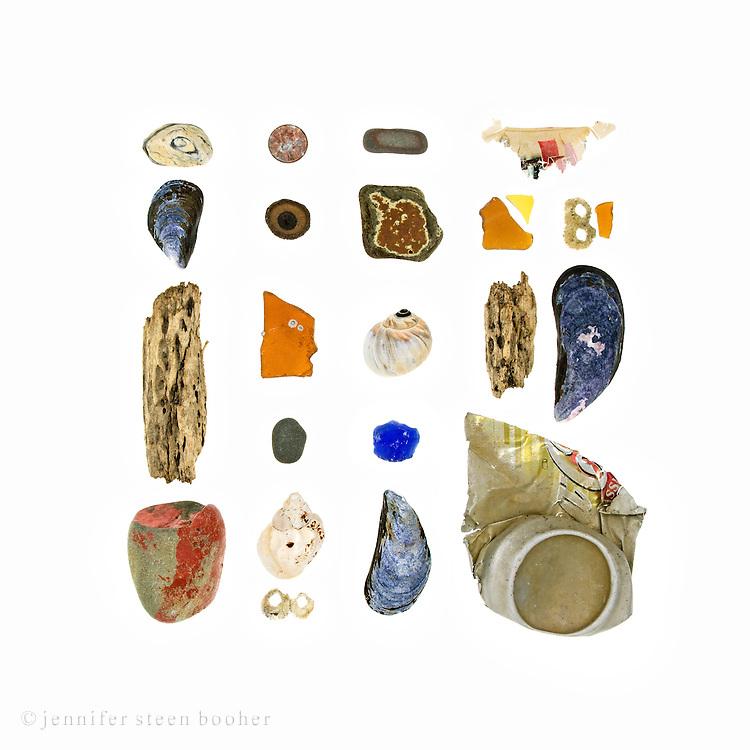 Beach stones, Blue Mussels (Mytilus edulis), driftwood, United States penny, acorn cap (Quercus sp.), sea glass, barnacles (Semibalanus balanoides), Waved Whelk (Buccinum undatum), stoneware fragment, Moon snail (Lunatia heros), paper scrap, beach china, aluminum soda can fragment.