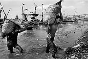 Shellfish harvest in the Indonesian village of Kali Baru, Java