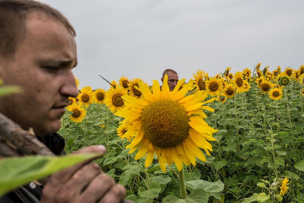 GRABOVO, UKRAINE - JULY 18: Miners search a field for debris and human remains from an Air Malaysia plane on July 18, 2014 in Grabovo, Ukraine. Malaysia Airlines flight MH17 travelling from Amsterdam to Kuala Lumpur has crashed on the Ukraine/Russia border near the town of Shaktersk. The Boeing 777 was carrying 280 passengers and 15 crew members. (Photo by Brendan Hoffman/Getty Images) *** Local Caption ***
