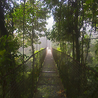 Central America, Costa Rica, Arenal. Hanging Bridge of Arenal Rainforest (Mistico).