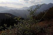 View of the Picos de Europa range from San Pedro de Bedoya, near Potes, northern Spain