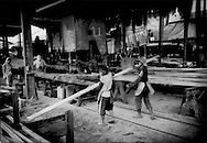 Workers, mostly Indonesians of dubious visa status, cut logs from the Borneo rainforest into planks of lumber for export in one of the sawmills that line the banks of Batang (River) Kemena, Bintulu, Sarawak, Malaysia.  According to the United Nations Environment Programme - World Conservation Monitoring Centre (UNEP-WCMC), 2004 World Database on Protected Areas Malaysia lost an average of 78,500 hectares of forest per year between 1990 and 2000.   Between 2000 and 2005, the rate of deforestation actually increased by 85.1%.  From 1990 to 2005, Malaysia forest cover decreased by 1.5 million hectares.