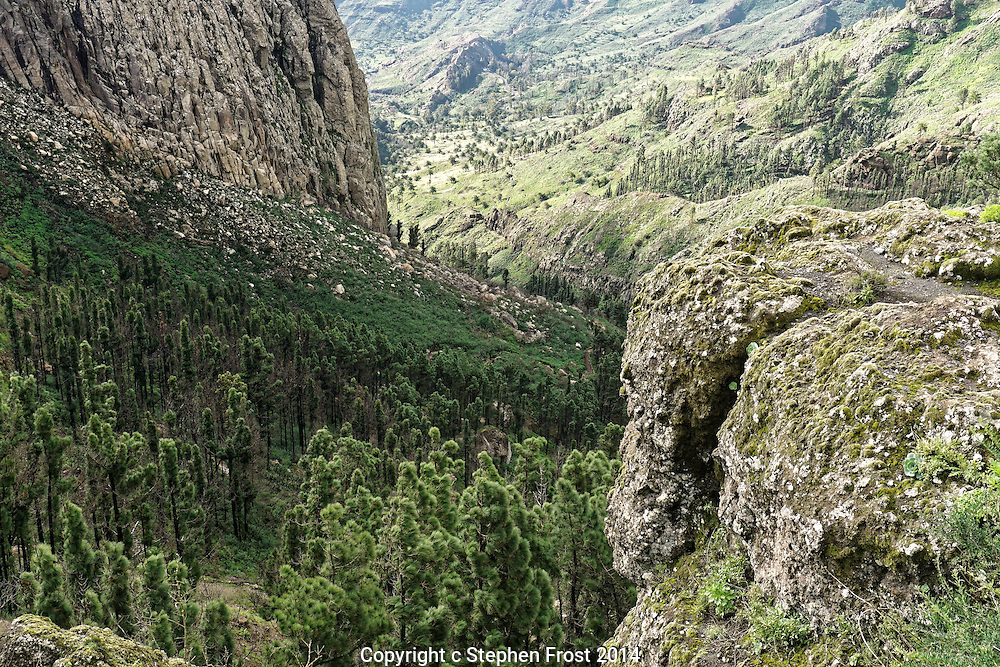Rocky ravine in the mountains of La Gomera, Canary Islands.