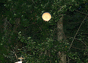 Bright sunlike orb floating over a bird house at dark