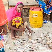 LÉGENDE: Rosine s'apprête à découper un poisson pour un client. LIEU: Marché de Chagoua, N'Djaména, Tchad. PERSONNE(S): Rosine Remadsi au centre gauche. Des gauches à droites les profils des clients débouts.