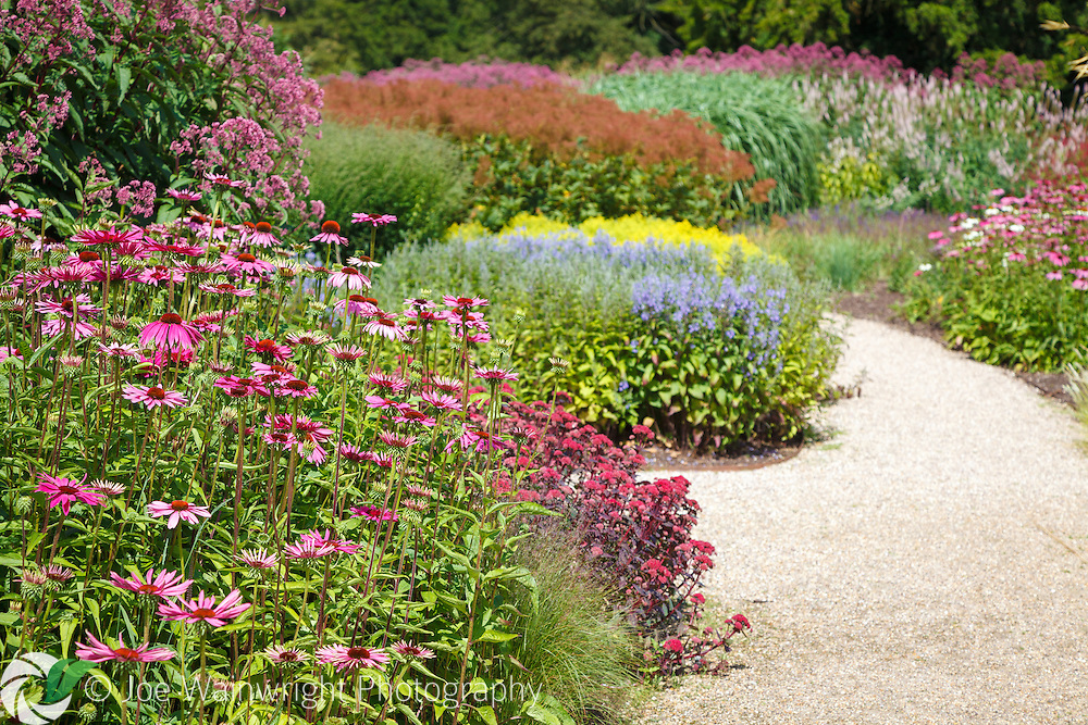 The waves of prairie-style planting at Trentham Gardens, near Stoke-on-Trent, Staffordshire, is the work of garden designers Piet Oudolf and Tom Stuart-Smith.