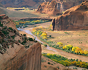 0100-1016XB ~ Copyright: George H.H. Huey ~ Canyon de Chelly, autumn afternoon, with cottonwood trees.  Canyon de Chelly National Monument, Arizona.