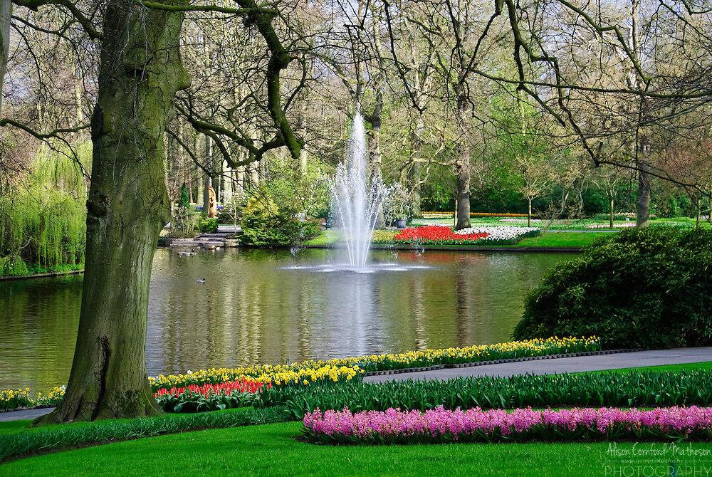 Keukenhof Spring Tulip Gardens, Lisse, The Netherlands : Alison ...