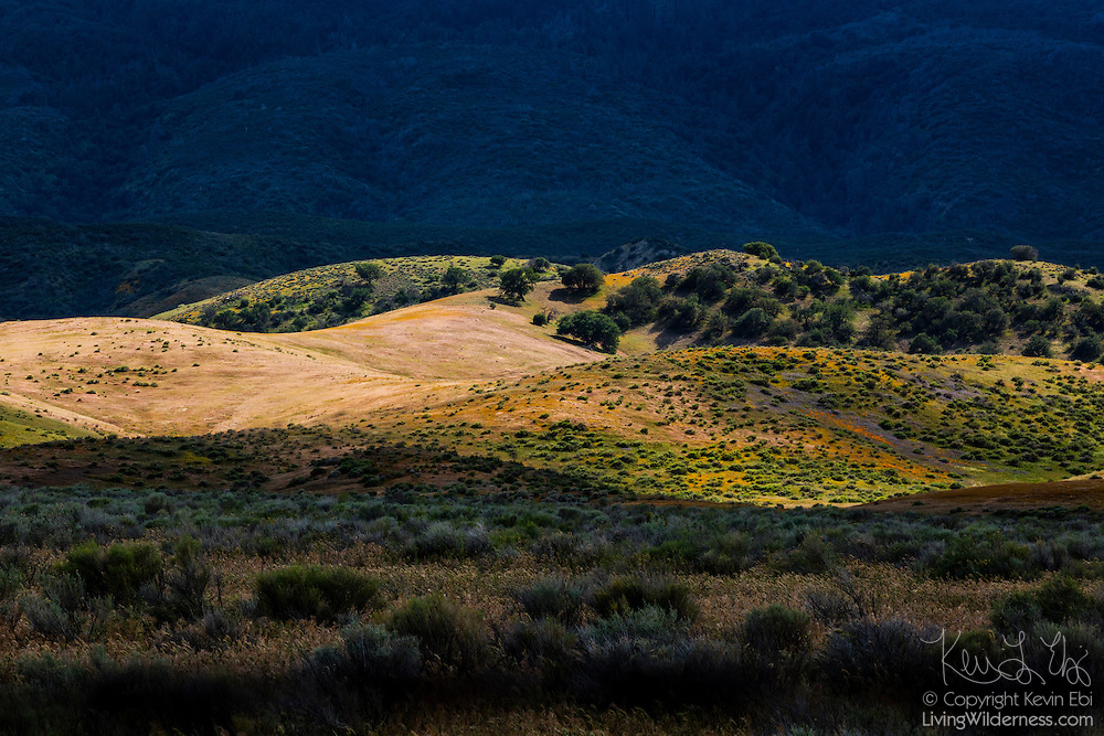 A narrow band of sunlight illuminates on band of rolling hills in the Antelope Valley of California near Liebre Mountain.