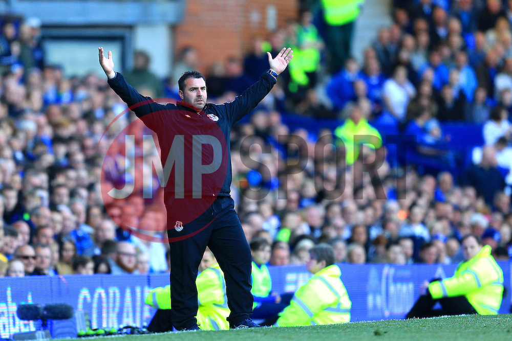 Everton Interim Manager David Unsworth gestures on the touch line - Mandatory byline: Matt McNulty/JMP - 15/05/2016 - FOOTBALL - Goodison Park - Liverpool, England - Everton v Norwich City - Barclays Premier League