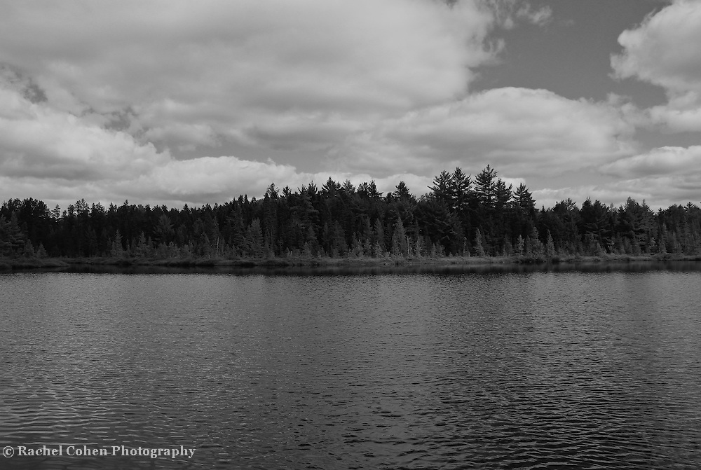 &quot;Solitude&quot; B&amp;W<br />