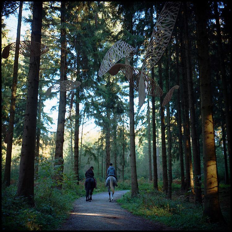 Le 22 octobre 2011, frontière Allemagne / Belgique, près d'Aix La Chapelle, RN 68, près de l'ancien poste frontière de Köpfchen. Des cavaliers se promènent dans la forêt, franchissant la frontière entre la Belgique et l'Allemagne, à l'endroit où, avant la création de l'espace Schengen, des contrebandiers faisaient circuler de la marchandise illégalement. Dans les arbres, une oeuvre artistique est suspendue. L'association culturelle KUKUK, qui a récupéré les postes frontières belges et allemands sur cette frontière, propose un parcours culturel en forêt passant dans les deux pays avec une série d'oeuvre d'artistes allemands, belges et hollandais.