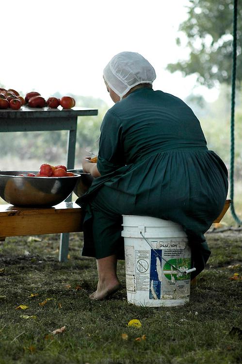 Pr&eacute;paration des conserves de tomates. Les Petersheim, install&eacute;s comt&eacute; de Clark depuis quatre g&eacute;n&eacute;rations, ont onze enfants de 5 &agrave; 23 ans. Pendant l'&eacute;t&eacute;, alors qu'il n'y a pas &eacute;cole, tous prennent part aux activit&eacute;s quotidiennes de la ferme et des r&eacute;coltes. Sur leur exploitation de 162 hectares, la taille moyenne d'une ferme Amish, ils cultivent de l'avoine, du bl&eacute;, du ma&iuml;s, du soja, du sorgo et du millet en suivant des techniques &eacute;cologiques traditionnelles. Ils ont &eacute;galement 40 chevaux, 25 vaches et un petit &eacute;levage de poules et cochons.<br /> <br /> Tomatoes can preparation. The Petersheim, established in Clark county since four generations, have eleven children from 5 to 23 years old. During the summer, whereas the school is closed, all take part in the daily activities of the farm and with harvests. On their exploitation of 162 hectares, average size of an Amish farm, they cultivate oat, wheat, corn, soy beens, sorgo and millet following ecological techniques. They also have 40 horses, 25 cows and a small breeding of hen and pigs.