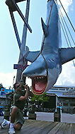 Spanish photographer photographing a ¨shark¨at Universal Studios