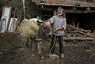 Since the eighties, the Mountain near Pistoia, in Italy,  hosts one of the most original of the Italian intentional community movement: The people of the Elves. At present there are over fifteen self-sufficiency nucleus, some even an hour's walk away on foot. The majority of homes are without electricity<br /> Community and individual life coexist harmoniously. <br /> There is no obligation : everyone is free to engage in social activities according to their willingness and aptitude.<br /> They collect fruits and herbs, grow vegetables, cereals, chestnuts, olives and raising some cattle, all exclusively for their livelihood. The products of the land and the crops are divided among all the villages on the basis of need. The work is manual and group, in addition to crops  they restored several dilapidated and abandoned stone houses for over twenty years.