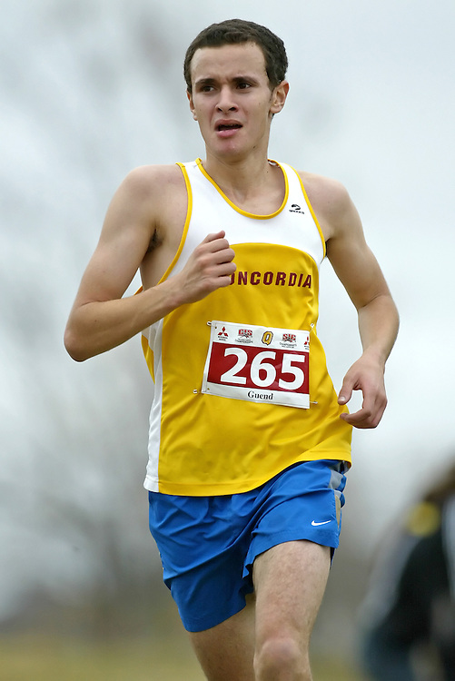 (Kingston, Ontario -- 14 Nov 2009)  SOFIANE GUEND of the Concordia University runs to 111 place at the  2009 Canadian Interuniversity Sport CIS Cross Country Championships at Forth Henry Hill in Kingston Ontario. Photograph copyright Sean Burges / Mundo Sport Images, 2009.