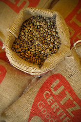 Coffee beans displayed during the Coffee Festival in Buon Ma Thuot, Vietnam, Southeast Asia