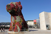 "Jeff Koon's ""Puppy"" sculpture, sitting outside the Guggenheim Museum in Bilbao. He designed the sculpture to mock the tacky souvenirs, but now it has become an icon in its own right."