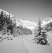 Oeschinensee In Winter, Kandersteg,  Berner Oberland