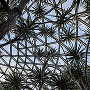 "Bloedel Conservatory is a domed lush paradise where you can experience the colors and scents of the tropics year-round, within Queen Elizabeth Park, atop the City of Vancouver's highest point. Bloedel Conservatory, Queen Elizabeth Park, Vancouver, British Columbia, Canada. Address: 4600 Cambie St. From Little Mountain (501 feet), see panoramic views over the city crowned by the mountains of the North Shore. A former rock quarry has been converted into beautiful Queen Elizabeth Park with flower gardens, public art, grassy knolls. In Bloedel Conservatory, more than 200 free-flying exotic birds, 500 exotic plants and flowers thrive within a temperature-controlled environment. A donation from Prentice Bloedel built the domed structure, which was dedicated in 1969 ""to a better appreciation and understanding of the world of plants,"" and is jointly operated by Vancouver Park Board and VanDusen Botanical Garden Association."